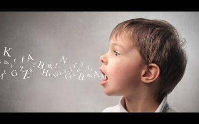 Le rôle du langage