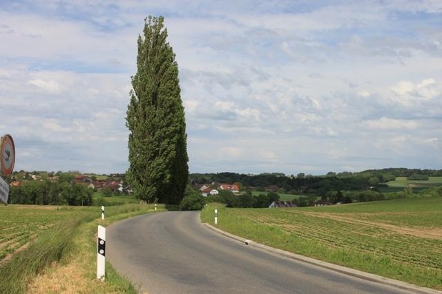 Vision dynamique du trafic